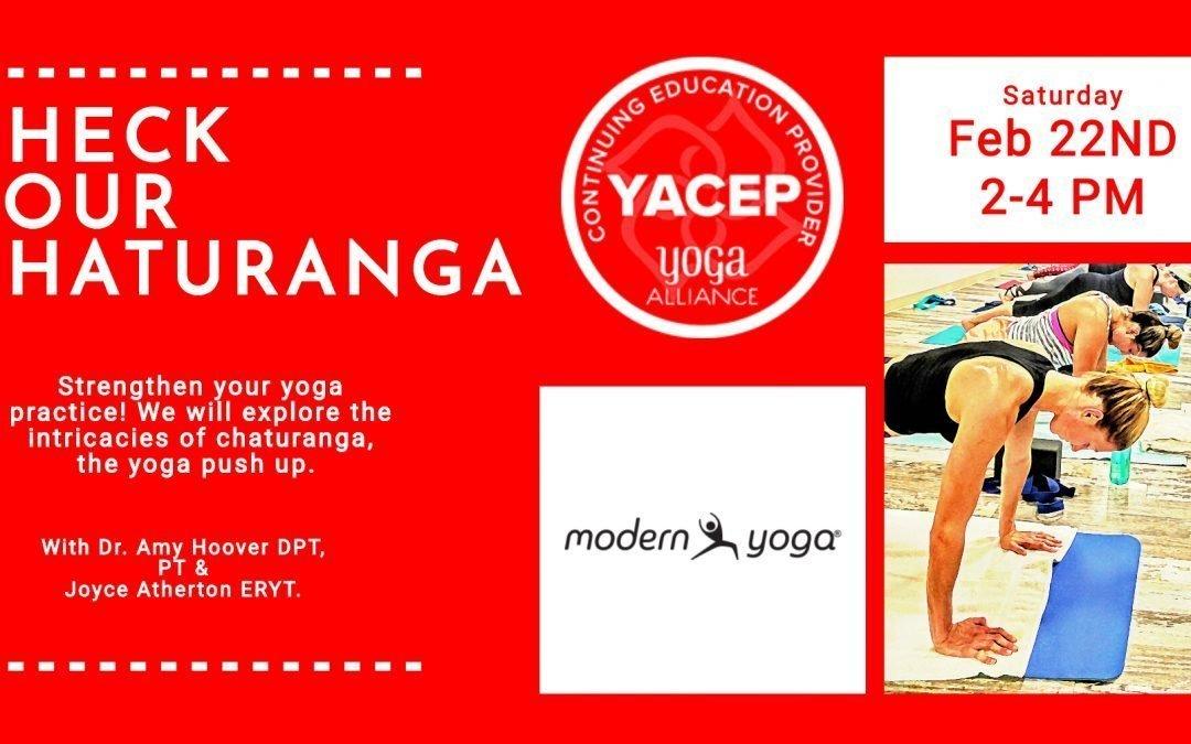 chaturanga yoga workshop