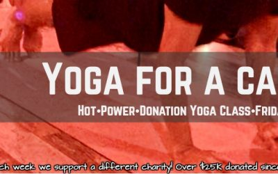 Free Hot Yoga, Donation class to support Victory Gallop